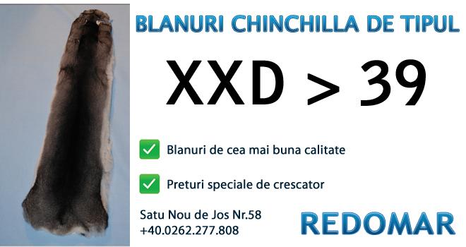 Blanurile de chinchilla de tipul xxd 39 - Redomar SRL