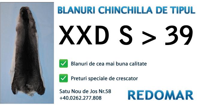 Blanurile de chinchilla de tipul xxd s 39 - Redomar SRL
